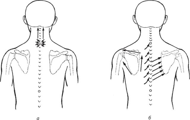 массажные линии шеи